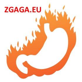 ZGAGA - wszystko o zgadze. zgaga.eu